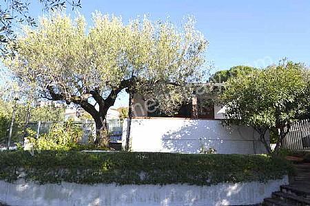 Casa Fantasia D - Image 1 - Palinuro - rentals