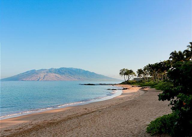 Beautiful Ulua Beach A Short Stroll From Grand Champions - Grand Champions #143 is a 3 bedroom 2 bath renovated SUMMER SPECIAL $299 - Wailea - rentals