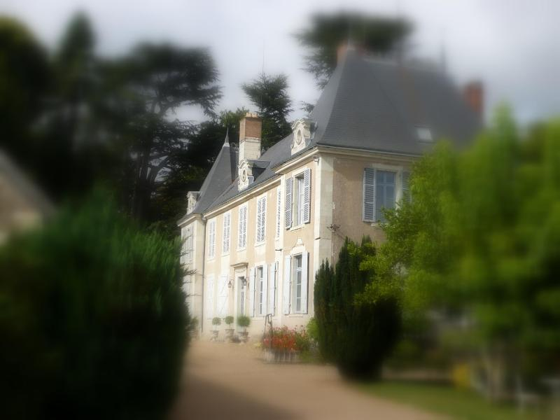 the house - MANOIR DE LA VOUTE - Pouille - rentals