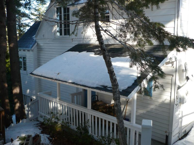 Bluebird Cottage is set among tall pines - Lake Arrowhead 1930's Charmer Remodeled Lake Views - Lake Arrowhead - rentals