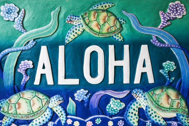 E-KOMO-MAI (Welcome to Our Home) - NEW KITCHEN & BATH REMODEL DONE - OCEAN VIEWS - Kailua-Kona - rentals