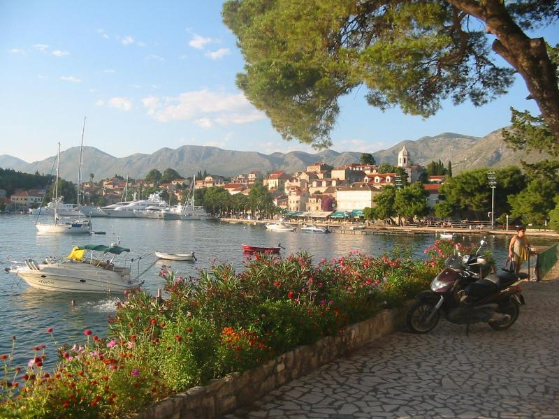 Family apartment for 8 persons - Image 1 - Cavtat - rentals