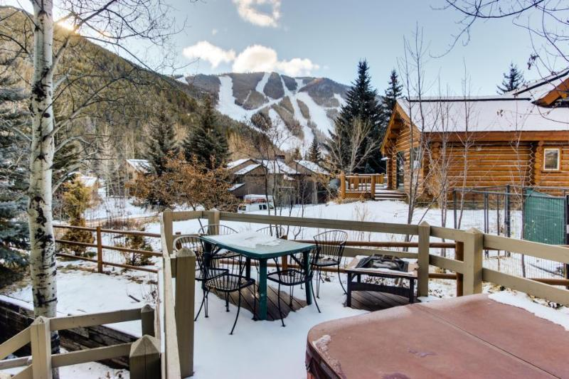 Dog-friendly lodge w/ private hot tub, mountain views, and centralized location! - Image 1 - Ketchum - rentals