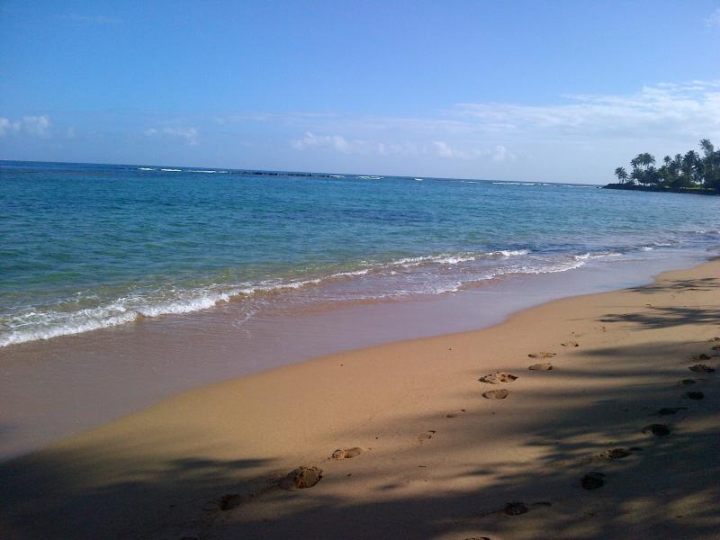 Villa Tranquila at Dorado Reef - Image 1 - Dorado - rentals