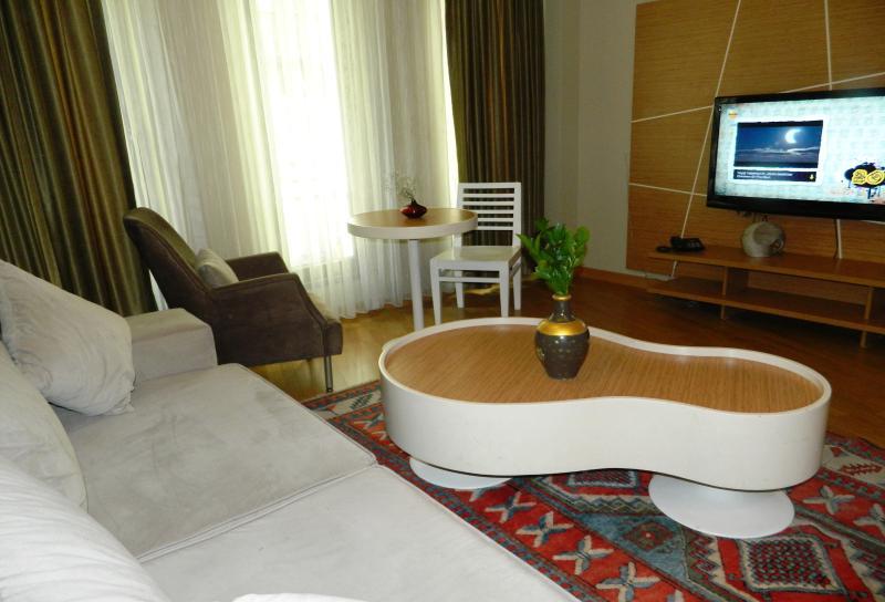 Deluxe Apartment at Taksim Premier Suites - Image 1 - Istanbul - rentals