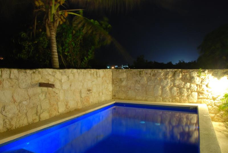 Very Private Salt Pool with LED Lighting - Hacienda with PRIVATE Pool and Ocean Views - Isla Mujeres - rentals