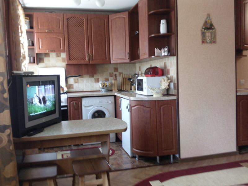 Recent homelike studio flat in the very centre of Kherson - Image 1 - Kherson - rentals