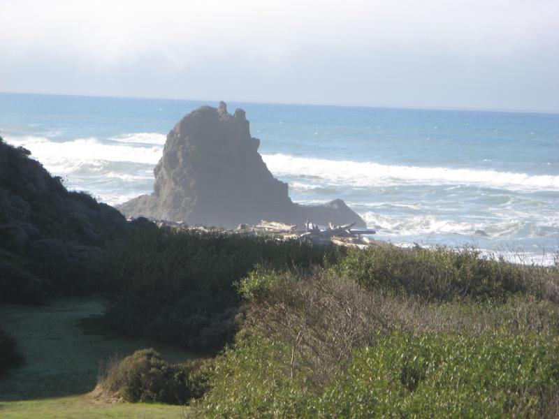 Private Beach 1/3 mile from home - Artists' Retreat Overlooking Pacific - Manchester - rentals