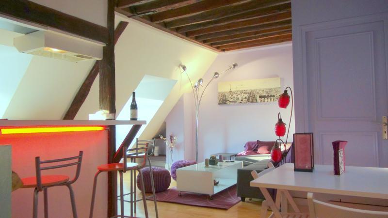 general view - Charming Rooftop Apartment in Paris XI - Paris - rentals