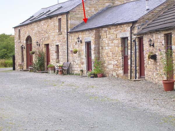 SWALLOW COTTAGE, horse stabling available, fantastic rural location, pet-friendly, cosy terrace cottage near Newcastleton, Ref. 903680 - Image 1 - Newcastleton - rentals