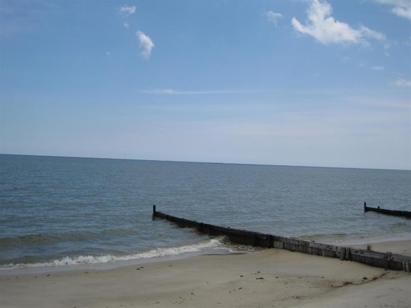 View from lawn - The Preserve - Ultimate Chesapeake Bay Experience! - Reedville - rentals