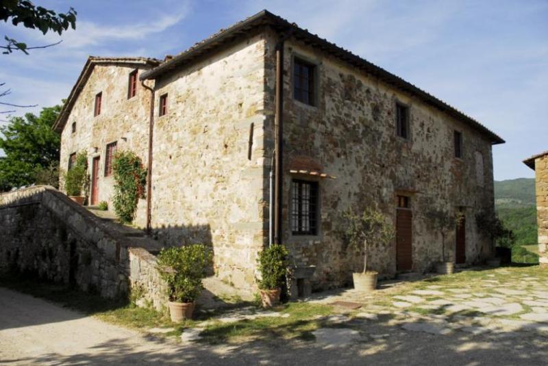 Vineyard Apartment - Image 1 - Greve in Chianti - rentals