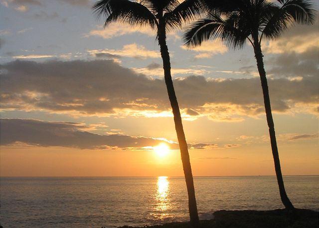 Kona Makai 1103 Oceanfront complex, great location in Kona Hawaii - Image 1 - Kalaoa - rentals