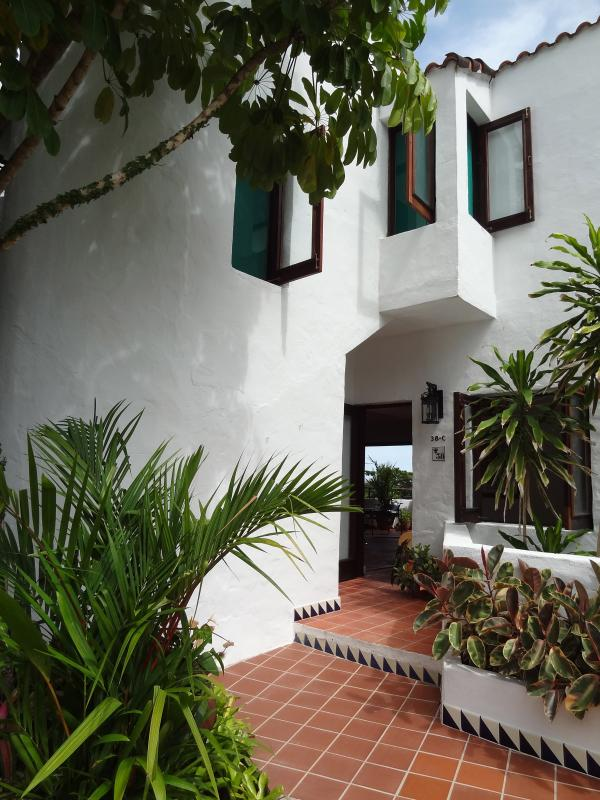 Most Exquisite Villa At Rio Mar  **+ Golf Cart!** - Image 1 - Rio Grande - rentals