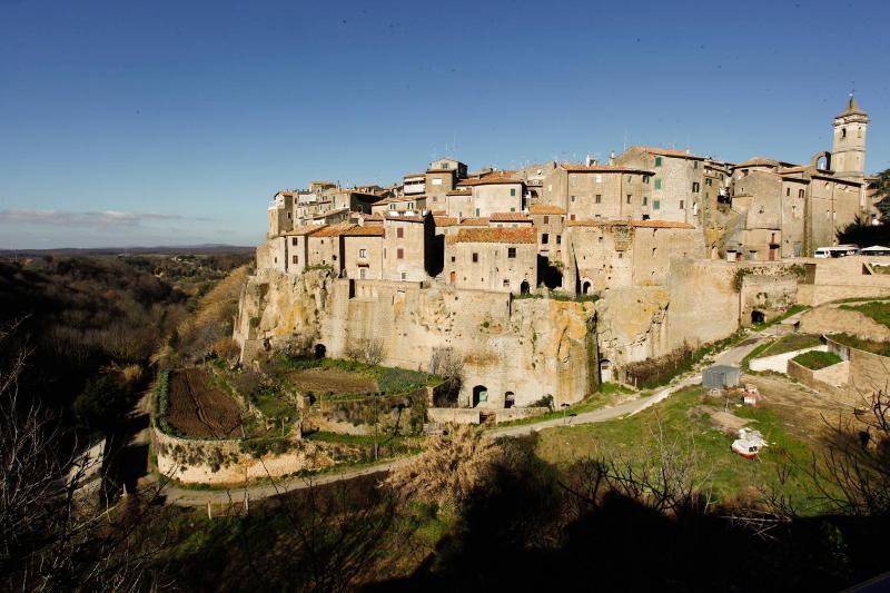 farnese - grande antica villa in maremma - Farnese - rentals