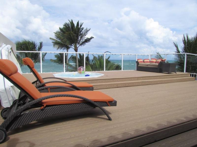 Cabarete: Kite Beach Penthouse - Image 1 - Cabarete - rentals