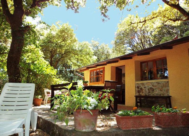 Cottage Quirina - Image 1 - Gambassi Terme - rentals