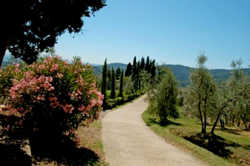 arriving at La Forra - Vacation apartment & pool in Tuscany, Chianti - Montegonzi - rentals