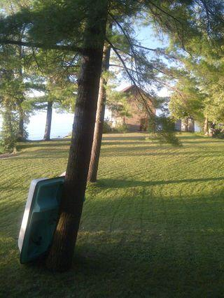 Front yard looking to boathouse - Large lakehouse - ideal for family gatherings! - Fenelon Falls - rentals