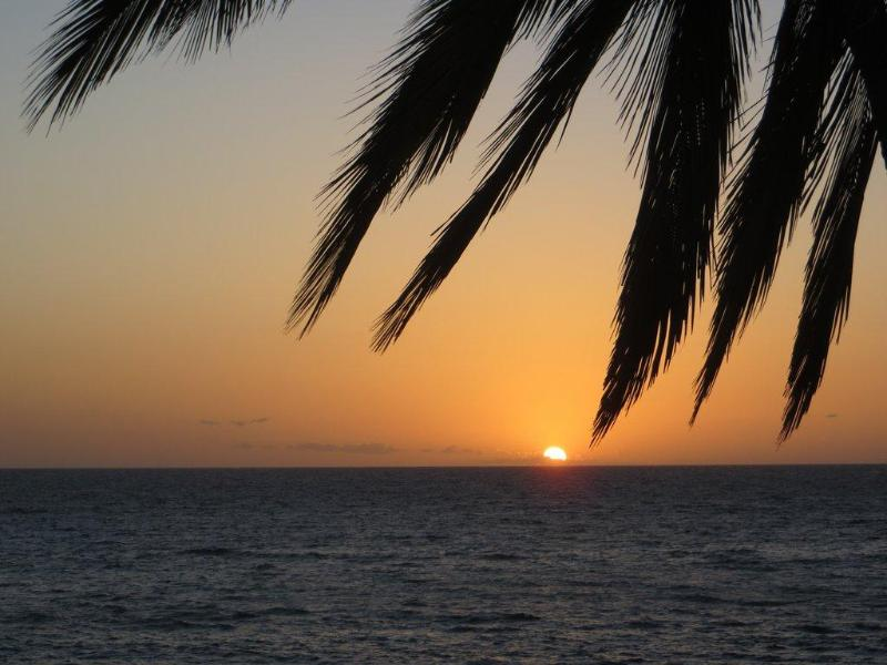Sunset Awaits -- at Charley Young Beach - just across the street - Affordable  Beachlovers Paradise  -  near beach - Kihei - rentals