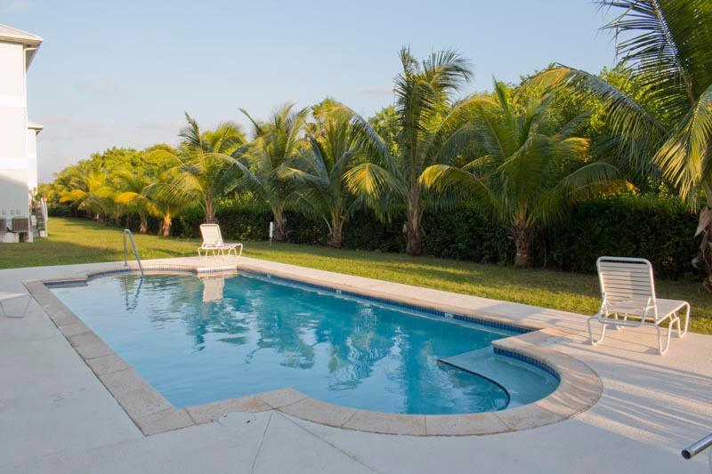 Poolside is only yards away - VERY AFFORDABLE One Bed apt, central to everything - George Town - rentals