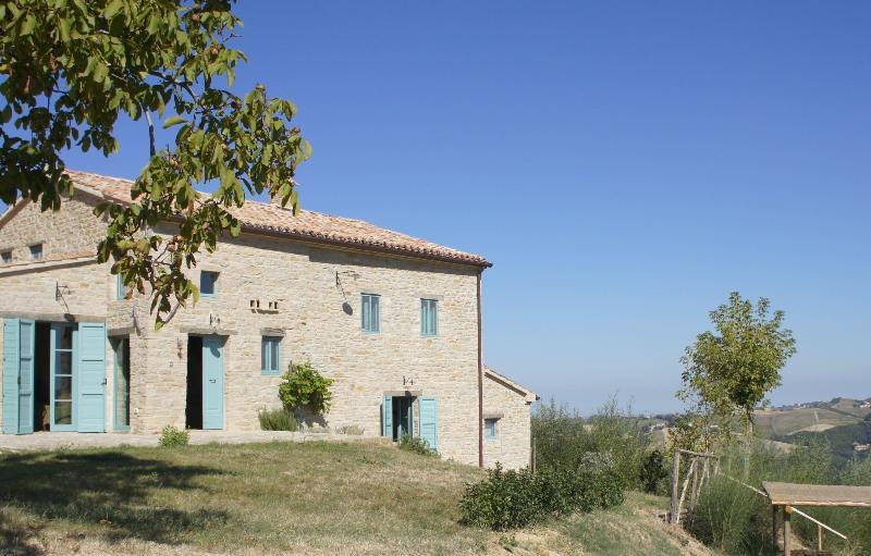 house view - BIO Fattoria Fontegeloni, LA CICALA E LA FORMICA, 42 mt apart. - Serra San Quirico - rentals
