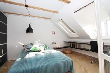 A Roof-top New Yorker Inspired Apartment - Image 1 - Copenhagen - rentals
