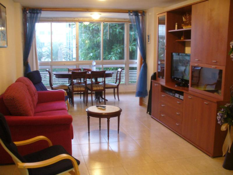Living room with double sofa bed, satellite TV and DVD player - Costa Blanca Spain Apartment Holiday Rental - Alicante - rentals