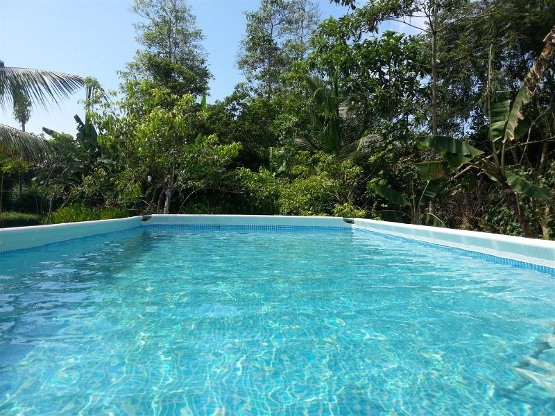 4 BR Holiday House with Swimming Pool - Image 1 - Hikkaduwa - rentals