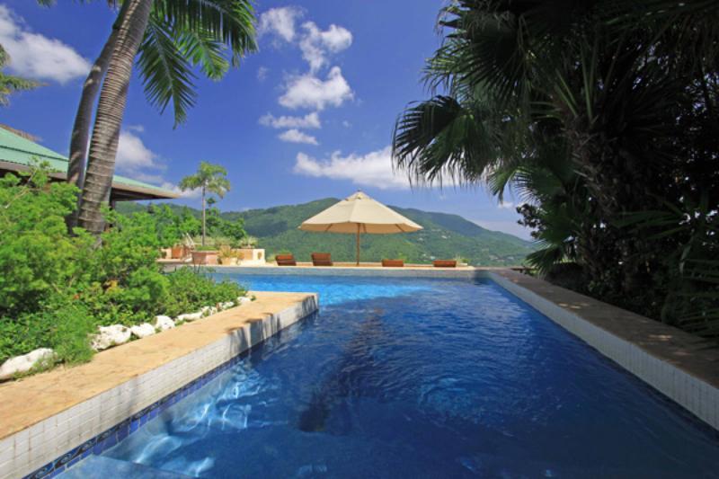 Pool - Arundel Villa - Guana Island - rentals