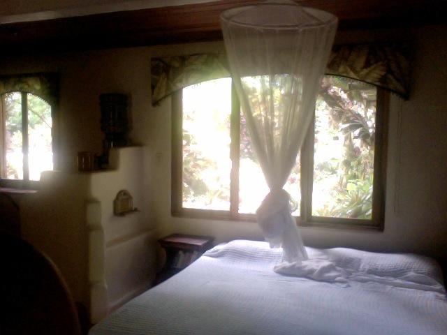 King-size bed - Studio Apartment - Puerto Viejo de Talamanca - rentals