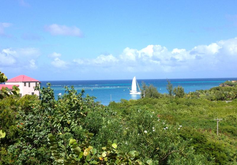 Imagine waking up to this incredible view of the Caribbean - Veronica's View - LOW SEASON PRICES IN EFFECT - Christiansted - rentals