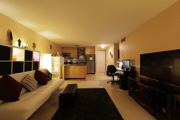 Main living space - Downtown on the Light Rail, Waterfront and Parks - Portland - rentals
