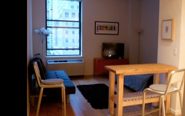 Gorgeous Studio/View/Luxury Building - Image 1 - New York City - rentals