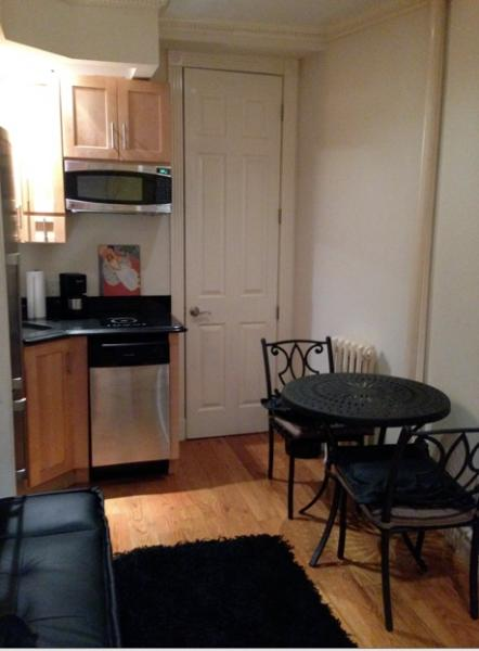 Sweet One Bdrom Apt./New and Shining! - Image 1 - New York City - rentals