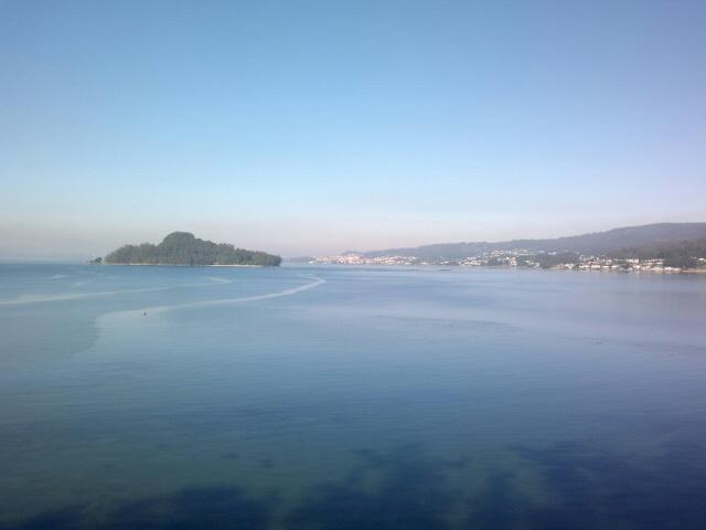vistas - Piso Rías Baixas - San Xoan de Poio - rentals