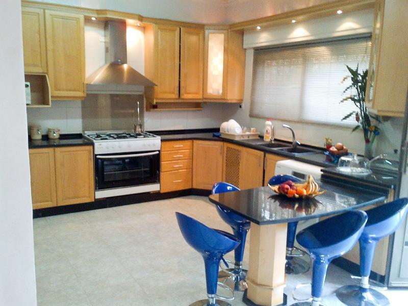 Furnished Apartment For Rent  Abdoun Amman Jordan - Image 1 - Amman - rentals