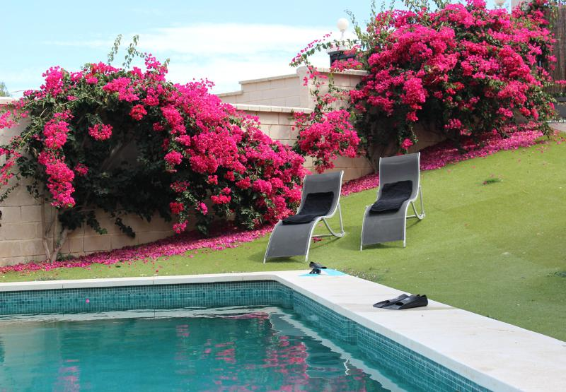 Pool Area - Vacation Villa with Private Pool in Benalmadena - Benalmadena - rentals
