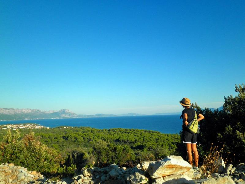 View from the hill near Su?uraj - Apartment (4+1)  for your wonderful holidays - Sucuraj - rentals
