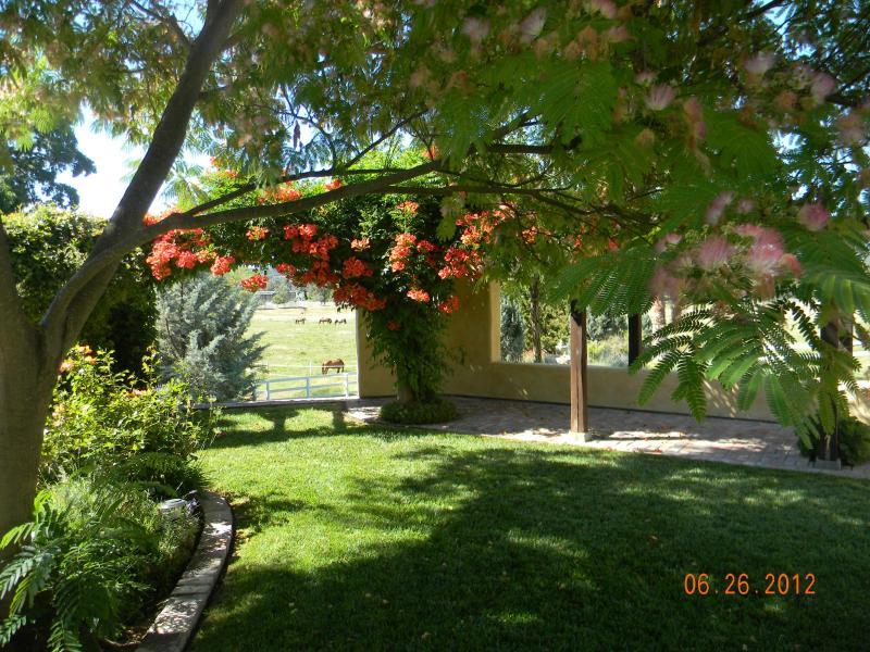 Destination Wedding Venue/ Family Retreat - Image 1 - Templeton - rentals