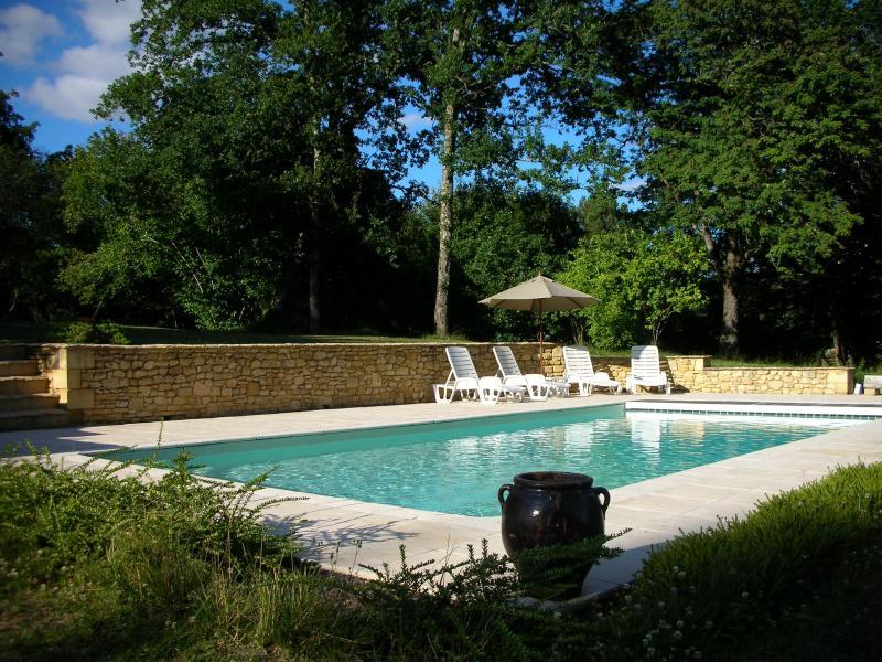 swimming pool - Perigord Noir La Chapelle Aubareil - Dordogne Region - rentals