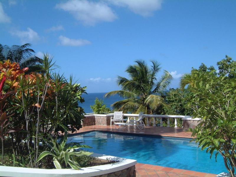 Pool - Montserrat Private Paradise; Min-y-Don - Woodlands - rentals