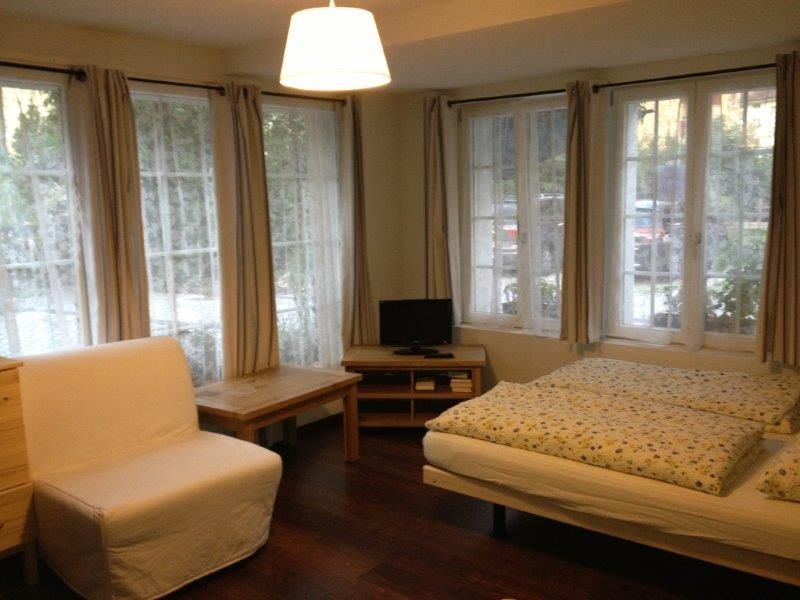The Studio room - CityChalet historic Studio Apartment - Interlaken - rentals