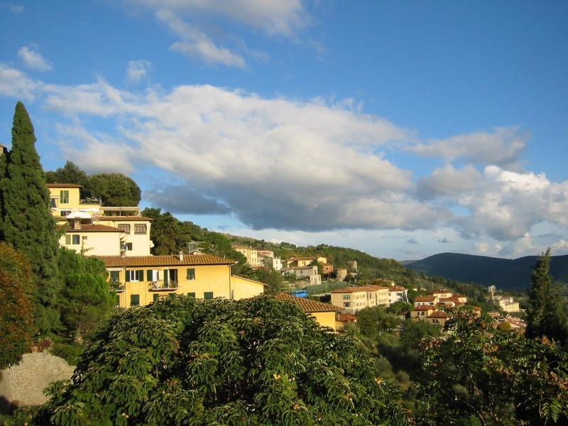 View of Cortona, nearby - Quiet Escape near Cortona - Camucia - rentals