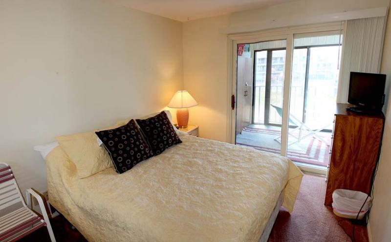 1619 - 2 Bed 1 Bath Standard - Image 1 - Saint George - rentals