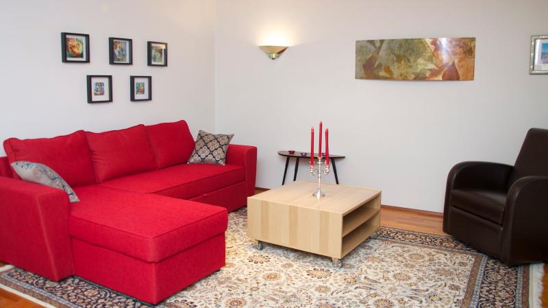 Living Room - Extremely nice and spacious apartment  in centrum - Reykjavik - rentals