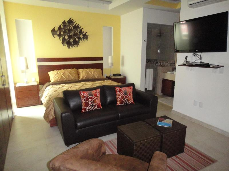A cozy contemporary studio in the center of it all! - V399 Contemporary Studio in Charming Old Town! - Puerto Vallarta - rentals