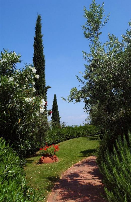 Bellavista 6 - Image 1 - Montaione - rentals