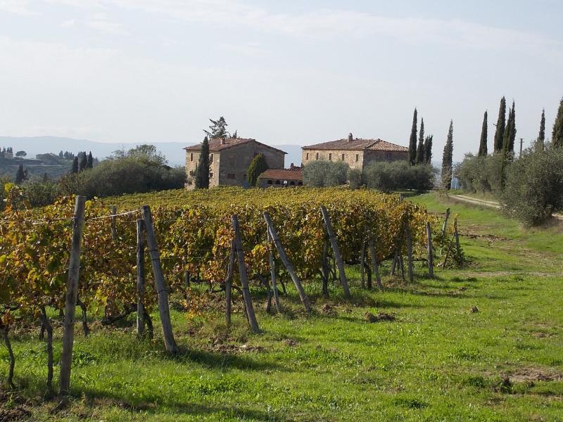 Visentini - Image 1 - Castellina In Chianti - rentals