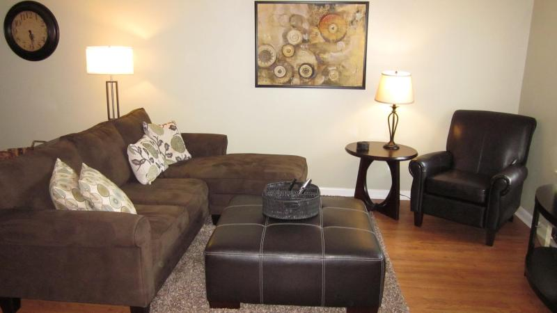 Living Room with Cable/HBR & WIFI - Spacious 2 Queen Bed Executive Home - Murfreesboro - Murfreesboro - rentals